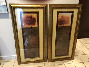 2 Long, Framed Pictures for Sale in Washington, DC