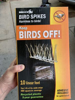Bird Off Spikes (20') for Sale in Fort McDowell, AZ