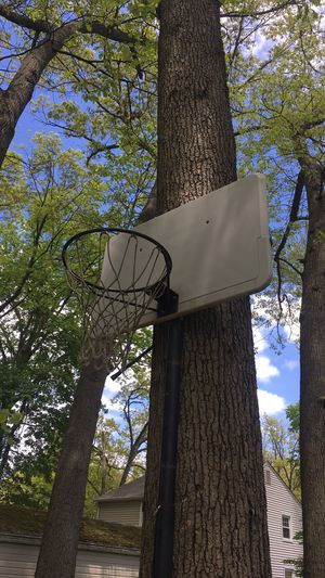 basketball hoop for Sale in Manchester, CT