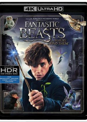 FANTASTIC BEASTS AND WHERE TO FIND THEM (4K MA) digital movie code. Instant delivery! Free Shipping! (DC4) for Sale in New York, NY