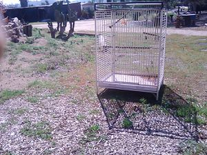 ,bird cage for Sale in Santee, CA