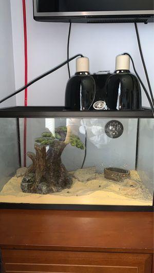 10 Gallon reptile/fish aquarium (All in One) for Sale in Centreville, VA