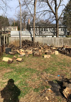 Free Oak Wood for Sale in Silver Spring, MD
