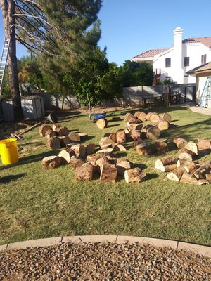 FREE Firewood !🔥 for Sale in Tempe, AZ