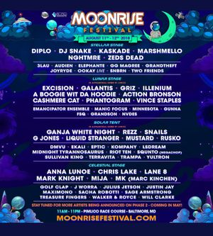 2 two-day GA wristbands for Sale in Boston, MA