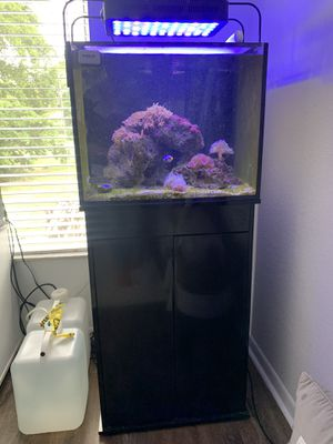 Innovative Marine 40G (Gallon) Reef Ready Fish Tank WITH STAND for Sale in Boca Raton, FL