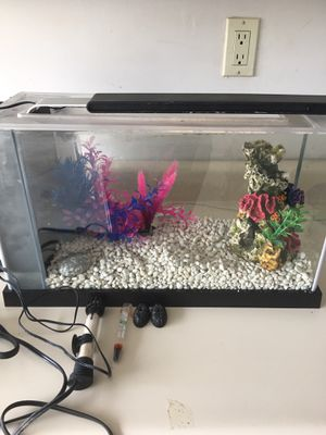 15 gallon fish tank with all accessories for Sale in Seattle, WA