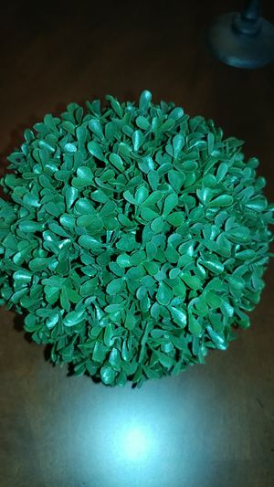 """Green boxwood ball, good quality . 8"""" diameter for Sale in Lancaster, CA"""