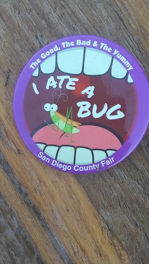 San Diego County Fair Button for Sale in Oceanside, CA