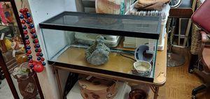 "Terrarium heat lamp Stone lead turn key snake lizard habitat. Fish tank. 30.5"" long 13"" tall 12"" deep for Sale in Orange, CA"