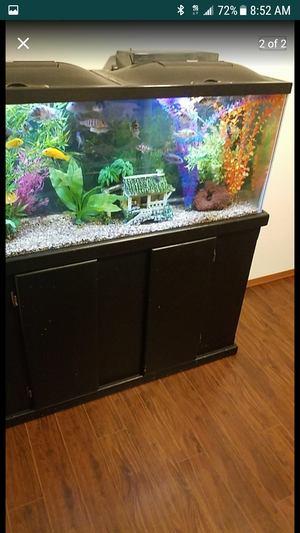 55 gallon aquarium with everything for Sale in Seattle, WA