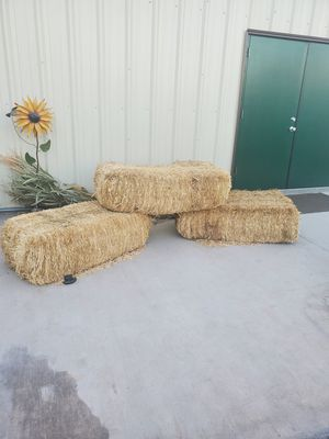 Hay bails for Sale in Mesa, AZ