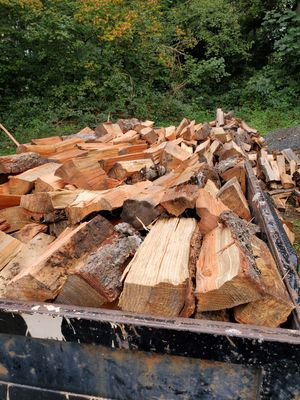 Douglas Fir for Sale in Snohomish, WA