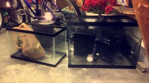 Tanks/Aquariums 10gal 20gal with Filters/Accessories for Sale in Cincinnati, OH