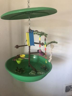 Bird play stand for Sale in US