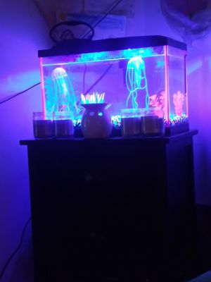 Complete Glo Fish tank and set (Fish not incl) for Sale in Temple Hills, MD