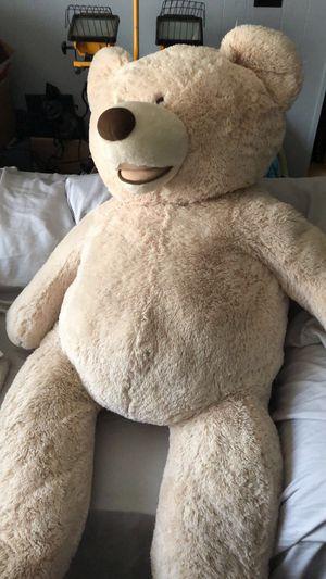 Costco Bear for Sale in Vancouver, WA