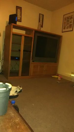 TV and TV stand for Sale in Elmira, NY