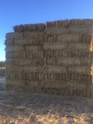 Hay bails for sale want gone ASAP for Sale in Vacaville, CA