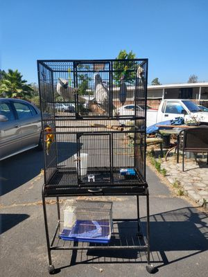 Large black cage perfect for any size bird on wheels with a shelf for Sale in Lakeside, CA