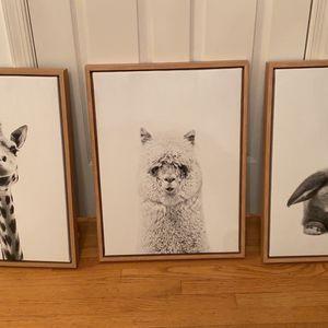 Framed Animal Portrait Photos On Canvas for Sale in Arlington, VA