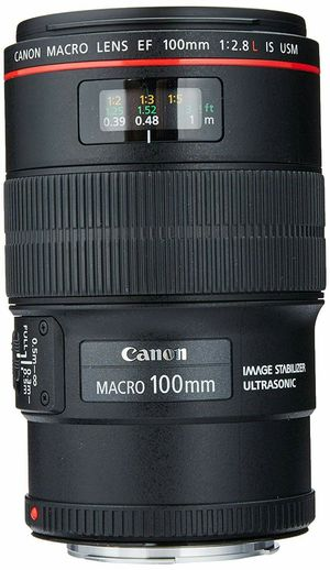 Canon Lens EF 100mm f/2.8L IS USM for Sale in Chicago, IL