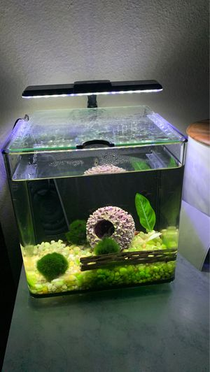 Fish tank 3 gal for Sale in San Diego, CA