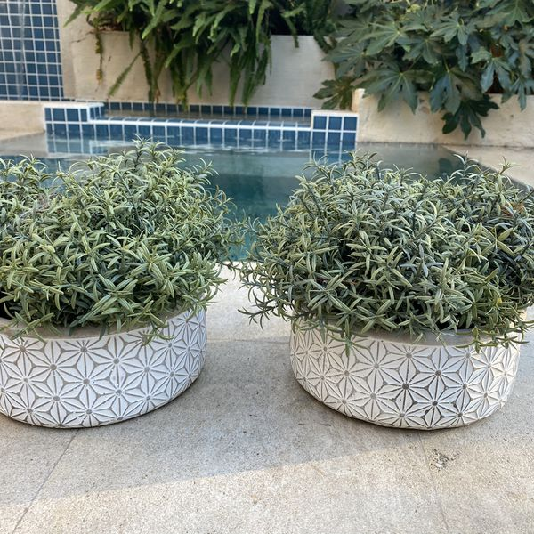 Two Pots With Fake Plants.