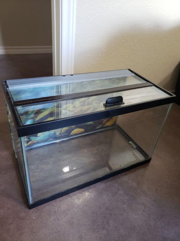 10 Gallon Aquarium + Accessories