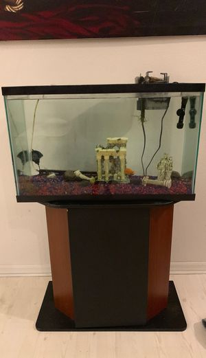 29 gallon fish tank and stand for Sale in PT CHARLOTTE, FL