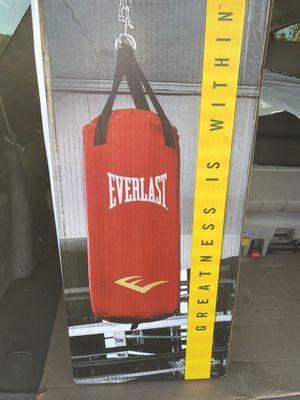 Punching bag / heavy bag Everlast Nevatear 40 lbs for Sale in Alexandria, VA