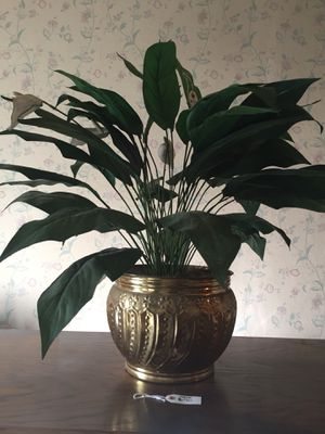 Plant fake for Sale in Rancho Cucamonga, CA