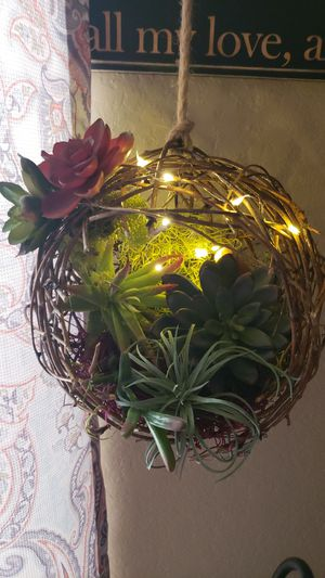 Wall decor succulent vine topiary ball with lights for Sale in Canyon Lake, TX