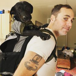 K9 Sport Sack Dog Carrier for Sale in Portland,  OR
