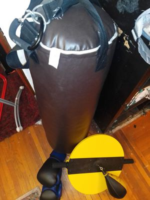 Set complete Professional never used Everlast boxing punching bag and boxing gloves. for Sale in Queens, NY