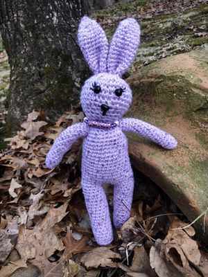 Handmade Amigurumi Crochet Bunny, Amigurumi Stuffed Animals, Crochet Dolls, Handmade Dolls Fox Penguin Bear Dog Cat, Amigurumi Disney Characters Purp for Sale in Burlington, MA