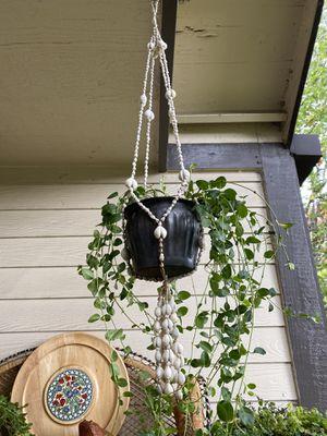 Vintage Boho Coastal White Cowrie Sea Shells Plant Flower Garden Hanger Holder for Sale in Eugene, OR