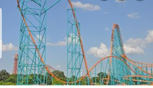 Six flags thickets for Sale in Dallas, TX