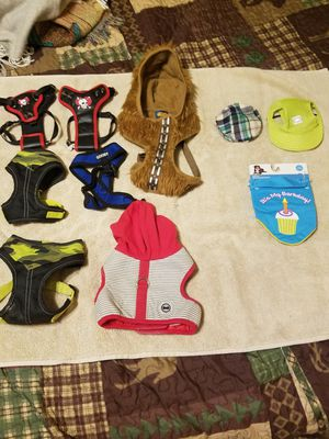 Dog Harnesses XS-M & Dog Hats for Sale in Mesa, AZ