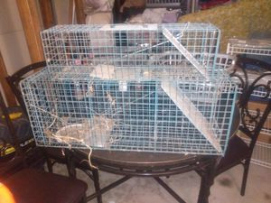 Pet cages for Sale in Menifee, CA