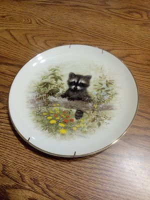 Raccoon collectable plate for Sale in Vista, CA