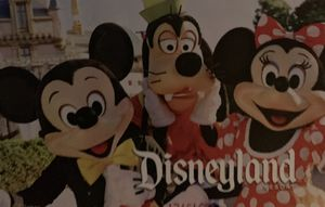 One extra tickets for Disneyland $130 any day for Sale in Los Angeles, CA