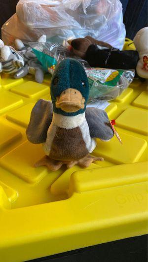 1998 jake the duck beanie baby for Sale in Reston, VA