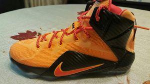 Nike lebron 12 witness size 6 for Sale in El Mirage, AZ