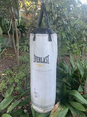 Everlast Punching Bag - 60lb for Sale in Austin, TX