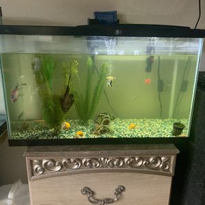 55 Gallon Fish Tank for Sale in Kent, WA