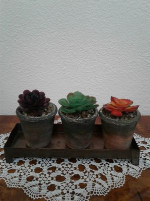 Artificial succulents in 3 small ceramic pots with metal tray. $15 OR BEST OFFER for Sale in Morada, CA