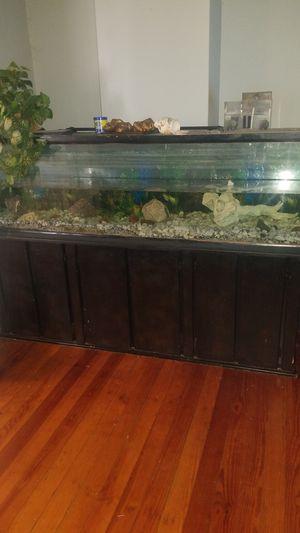 175 Gallon Aquarium for Sale in Alton, IL