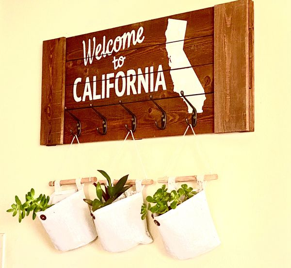 California sign wooden wall decor boho chic farmhouse decor rustic decor cotton plant sacks succulents house plants indoor plant outdoor plant