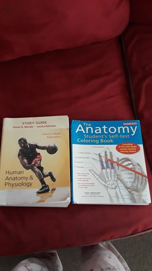 STUDY GUIDE HUMAN ANATOMY & PHYSIOLOGY for Sale in Tampa, FL
